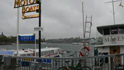 harbour250