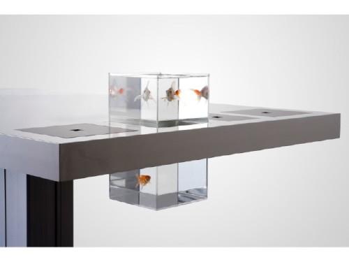 quatuor_Milk_Desk_1
