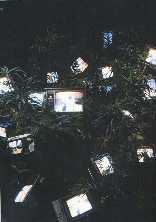 video garden
